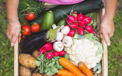 Grow your own – why and what are the nutritional benefits of home-grown vegetables