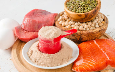 The Importance of Dietary Protein